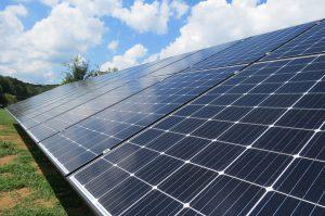 vineyard: solar panels
