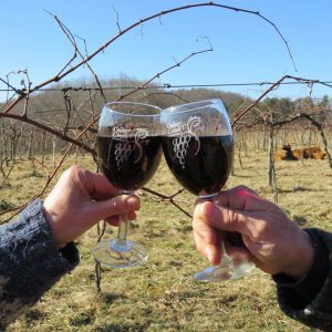 vineyard: two wine glasses with wine clinking