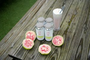 Braxton Labs: pink guava fruit with beer cans and a milkshake
