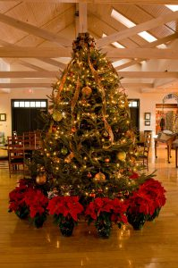 Holiday: christmas tree with poinsettias in front